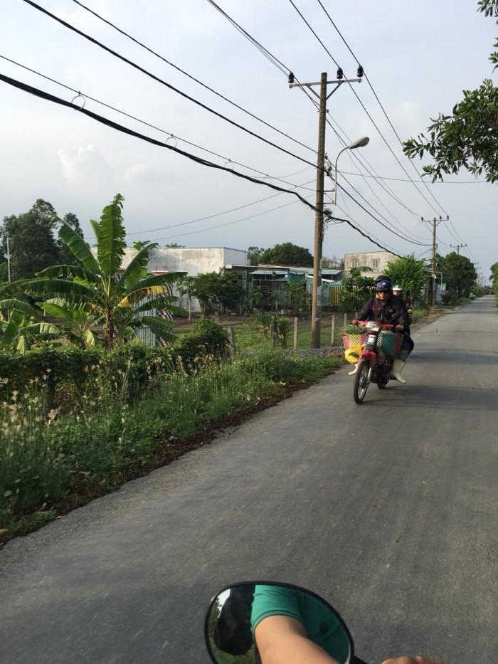 1000m2 đất, xã Quy Đức, huyện Bình Chánh