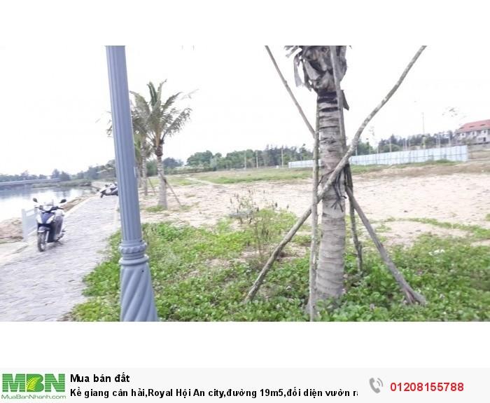 Kề giang cân hải,Royal Hội An city,đường 19m5,đối diện vườn ran Trà Quế