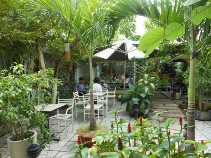 Bán Lại quán Cà Phê sân vườn 950m2 đường Phạm Hùng, Bình Chánh.