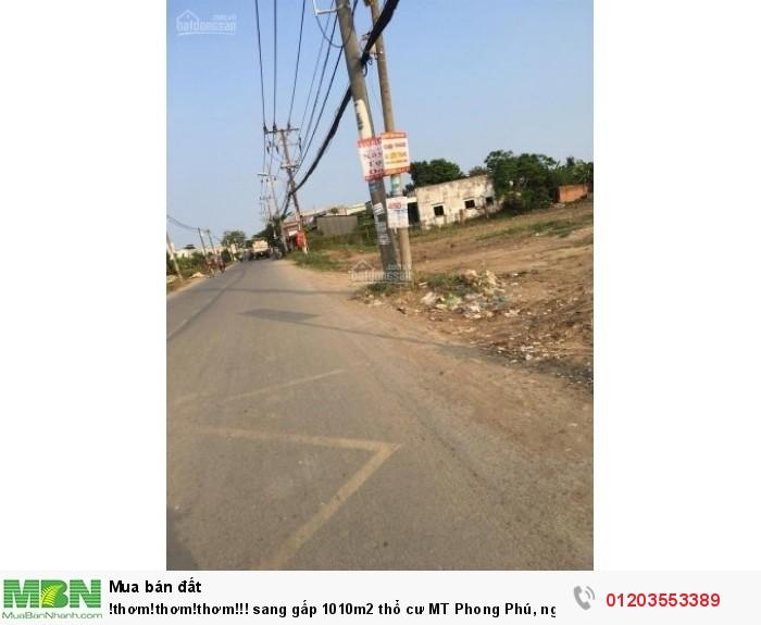 Sang gấp 1010m2 thổ cư MT Phong Phú, ngang khủng, giá từ thiện,