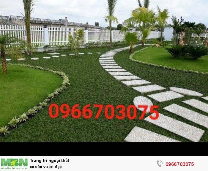 Cỏ sân vườn đẹp