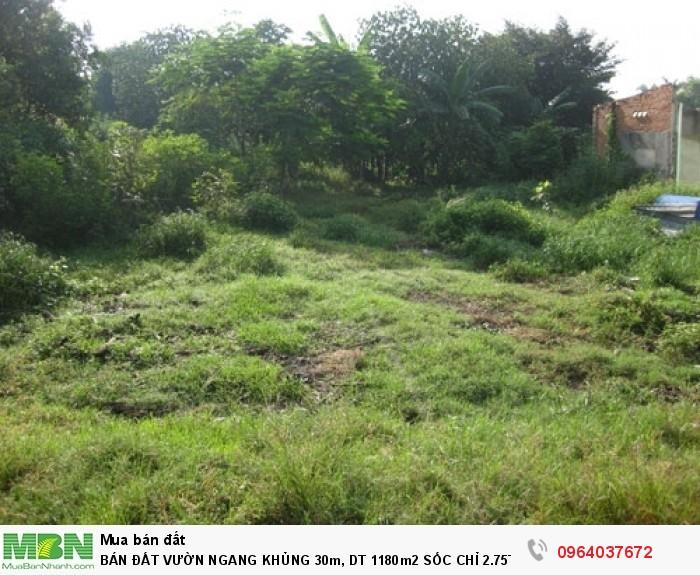Bán đất vườn ngang khủng  30m, DT 1180m2 sốc, MT Bông Văn Dĩa, xã Tân Kiên