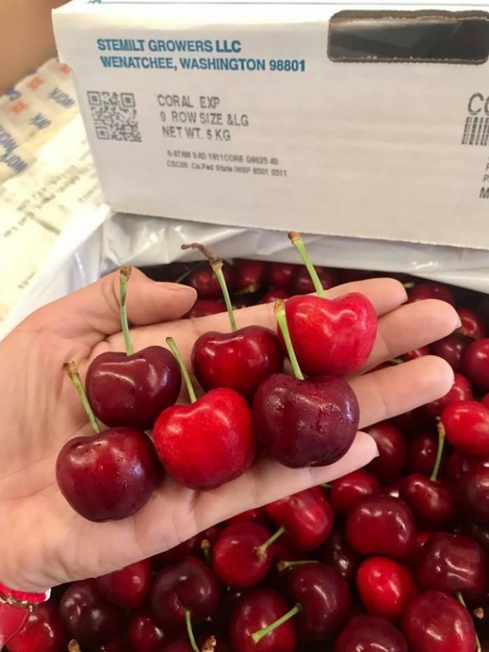 Cherry Mỹ1