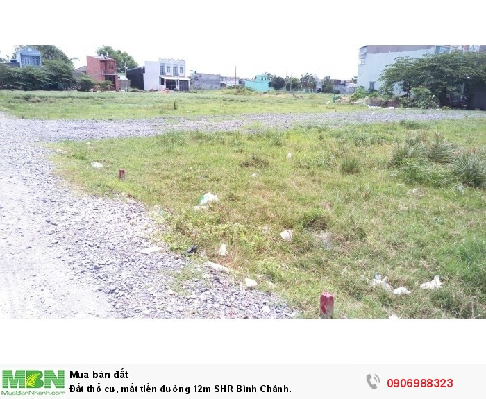 Đất thổ cư, mắt tiền đường 12m SHR Bình Chánh.