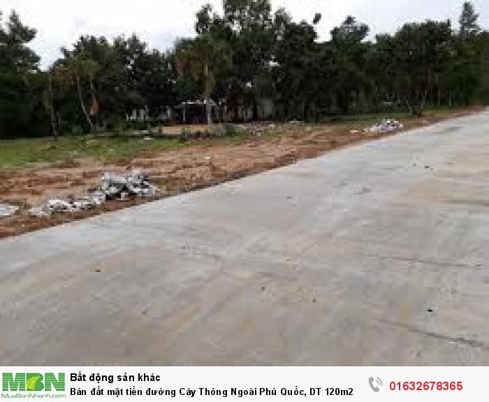 Bán đất mặt tiền đường Cây Thông Ngoài Phú Quốc, DT 120m2
