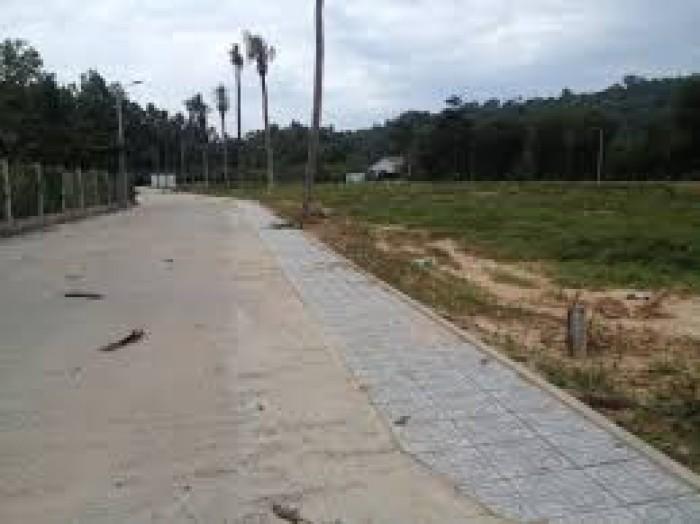 Đất nền mặt tiền cây thông ngoài, cam kết lợi nhuận 20% trong 6 tháng