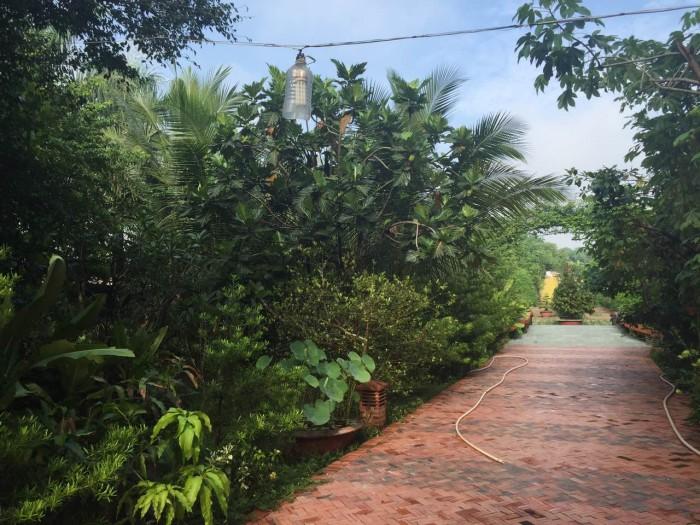 Cần bán khu resort gia đình, DT: 10.000m2 có 2300m thổ cư.