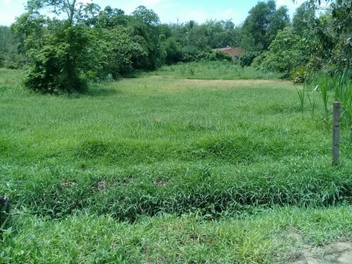 Cần bán đất đường Võ thị bàng (đường 827 cũ) DT: 30 x 60m, thổ cư 300m