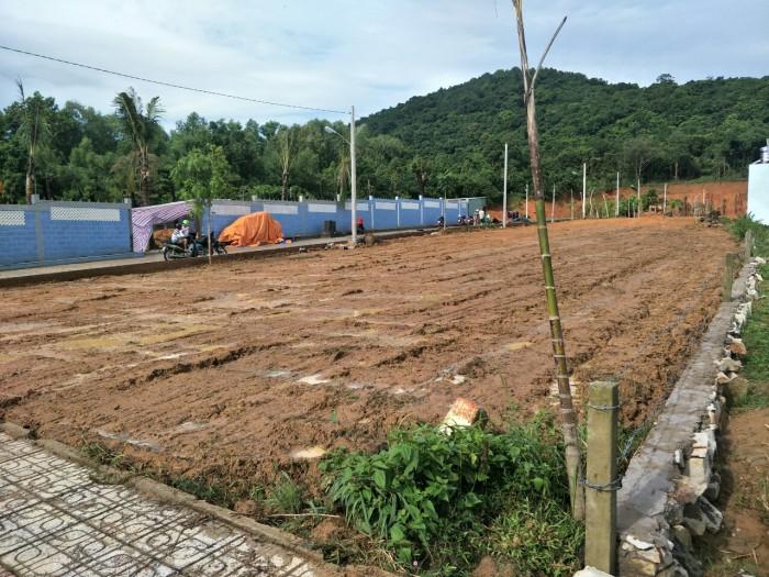 Bán đất nền dự án mặt tiền cây thông ngoài thanh tra đã qua
