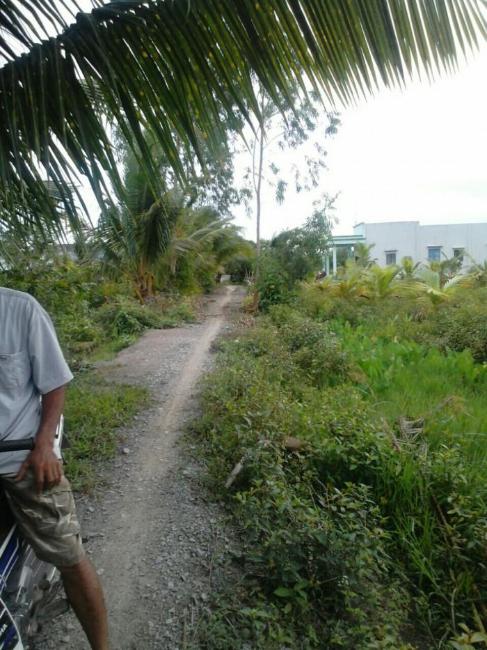 Lô đất vườn 80x70 ấp 2 xã bình hòa nam đường số 3m