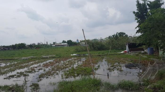 Đất Bình Thành Bình Tân đầu tư giá chỉ 14tr/m2