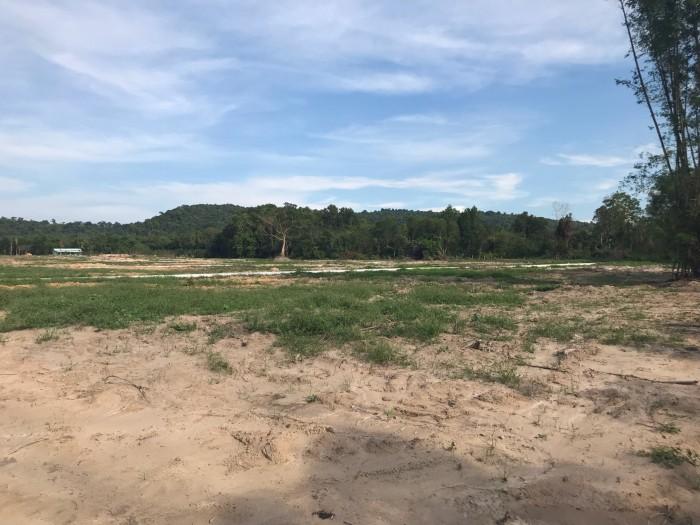 Đất nền đường Cây Thông Ngoài quy hoạch đất ở 100%