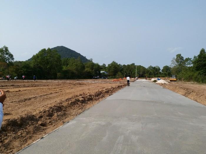 Bán đất mặt tiền đường cây thông ngoài khu phố 11