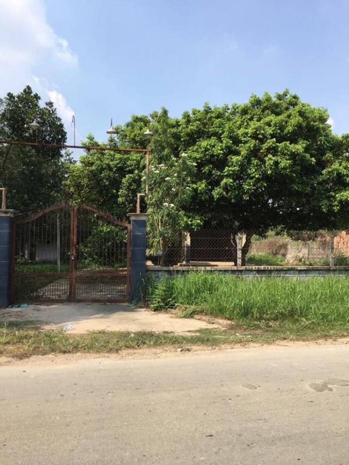 Bán đất MT tỉnh lộ 15 xã phú Hòa Đông củ chi ,DT,4367m2 chính chủ ,SHR