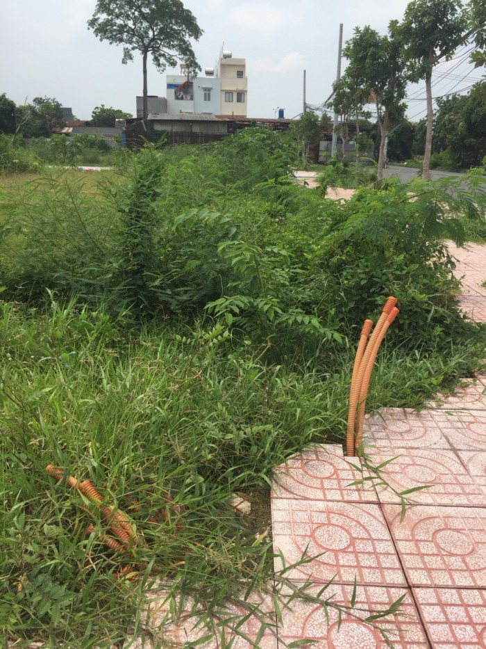 Ngân Hàng Phát Mãi 10 Lô Đất Nằm trong KDC AN PHÚ TÂY-HƯNG LONG. Huyện Bình Chánh