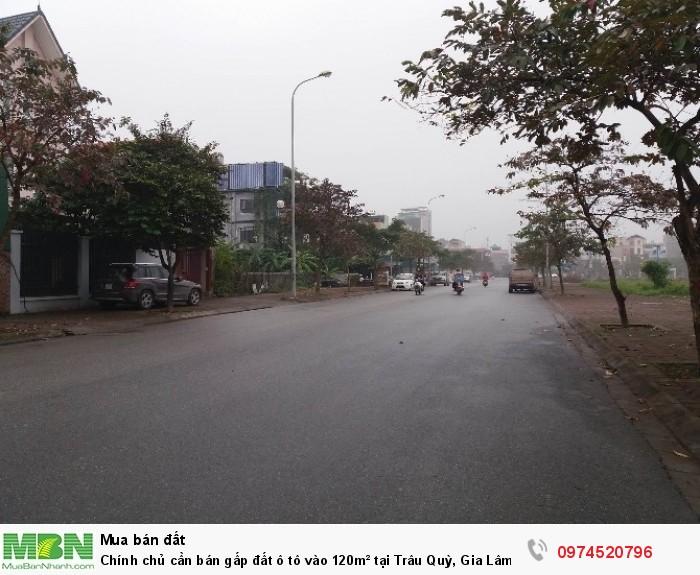Chính chủ cần bán gấp đất ô tô vào 120m² tại Trâu Quỳ, Gia Lâm chỉ với 42tr/m²