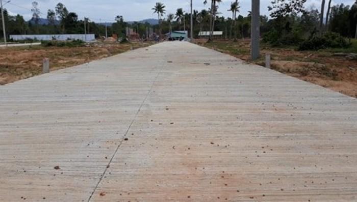 Bán đất nền mặt tiền đường Cây Thông Ngoài, SHR, S=119m2