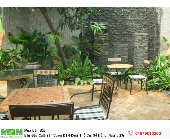Bán Gấp Café Sân Vườn DT 645m2 Thổ Cư, Sổ Hồng, Ngang 29m, Hóc Môn