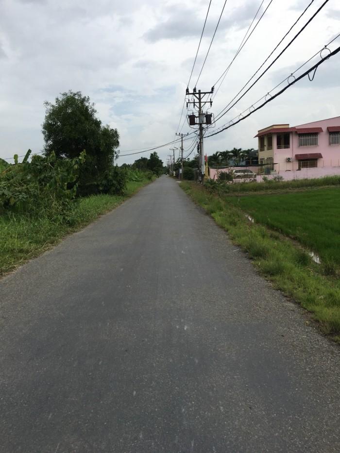 Bán 600m2 đất mặt tiền đường T12, xã Tân Qúy Tây, Bình Chánh