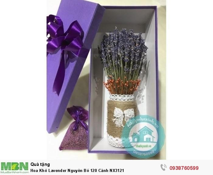 Hoa Khô Lavender Nguyên Bó 120 Cành NX31211