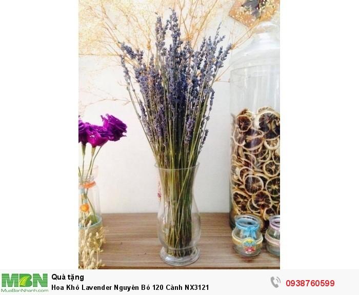 Hoa Khô Lavender Nguyên Bó 120 Cành NX31210