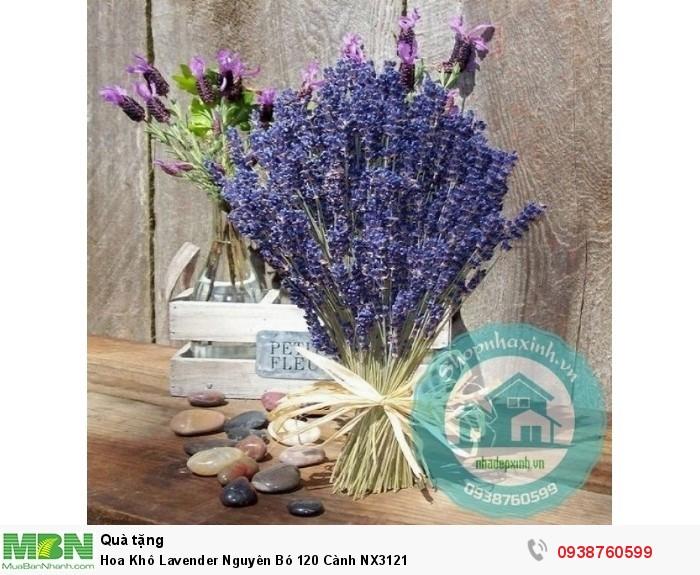 Hoa Khô Lavender Nguyên Bó 120 Cành NX31212