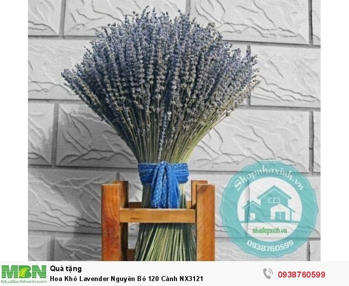 Hoa Khô Lavender Nguyên Bó 120 Cành NX31213