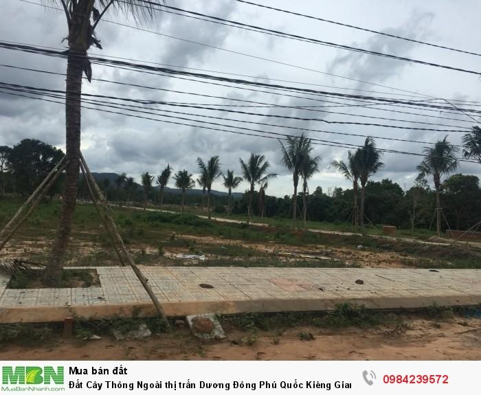 Đất Cây Thông Ngoài thị trấn Dương Đông Phú Quốc Kiêng Giang