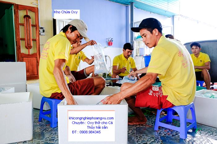 Bán Đổi Bình Khí Oxy Thở Cho Cá - Thủy Sản1