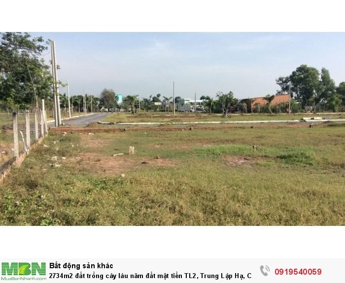 2734m2 đất trồng cây lâu năm đất mặt tiền TL2, Trung Lập Hạ, Củ Chi