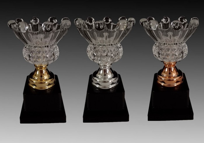 Kỷ niệm chương pha lê , biểu trưng pha lê, cúp pha lê trao giải, cúp pha lê lưu niệm3