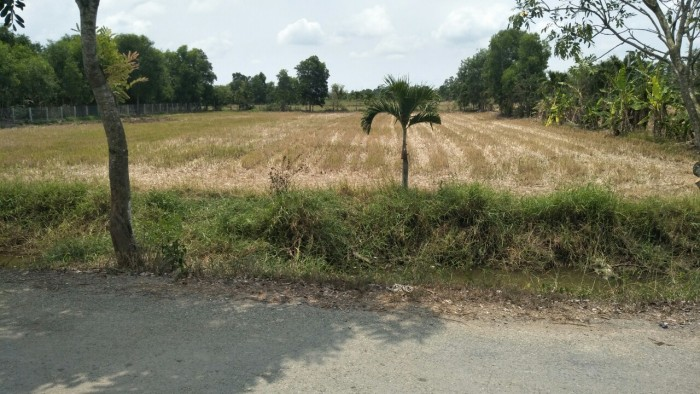 Chính chủ bán 2158m, đường tải, gần phà Cát Lái Xã Phú Đông, Nhơn Trạch. Sổ riêng.