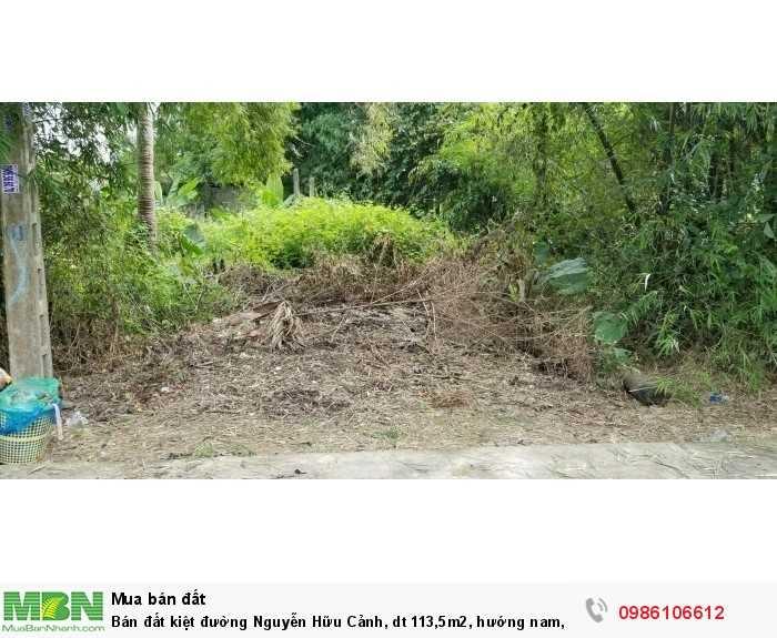 Bán đất kiệt đường Nguyễn Hữu Cảnh, dt 113,5m2, hướng nam