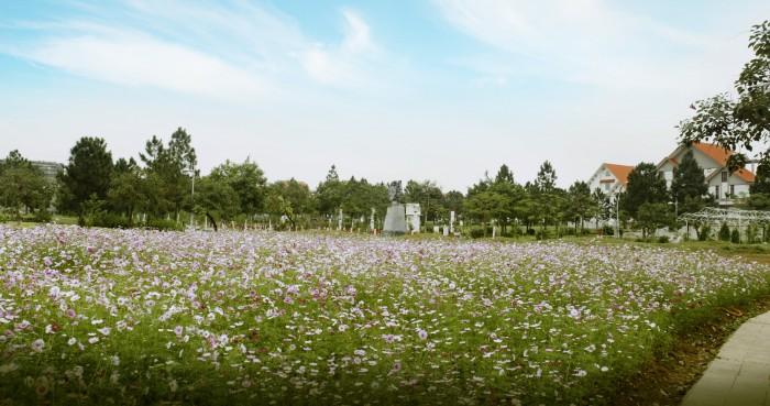 Biệt thự đơn lập 5 tỷ tại khu đô thị đáng  sống nhất phía Tây Hà Nội