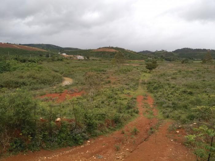 Cần bán 4,5 hecta đất, thuộc khu vực xã Tà Năng/ Tahine Huyện Đức Trọng, Lâm Đồng