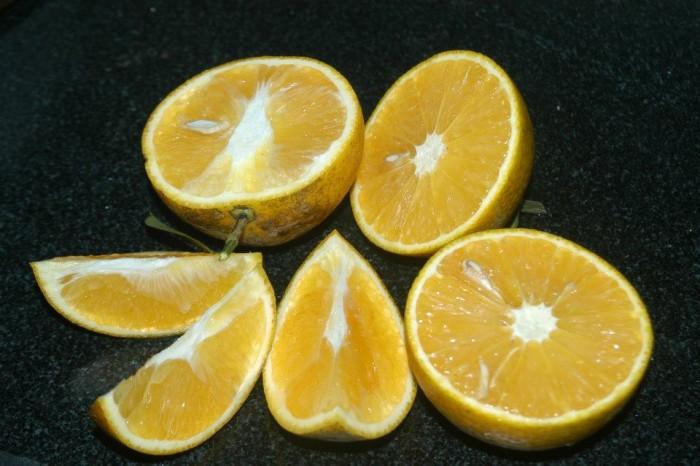 Viện cây giống trung ương, cung cấp giống cam v2 chín muộn. chuẩn giống2