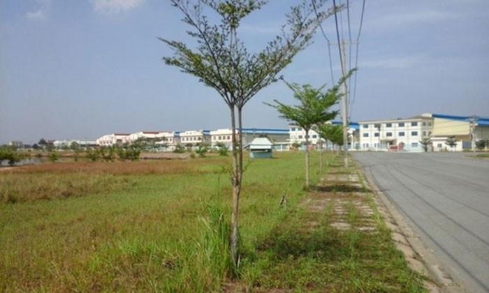 Mở bán đất nền phân lô tại Long Thành , tỉnh Đồng Nai siêu hót