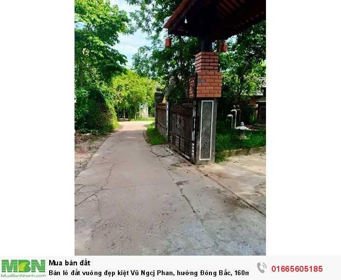 Bán lô đất vuông đẹp kiệt Vũ Ngcj Phan, hướng Đông Bắc, 160m2, giá chỉ 460 triệu