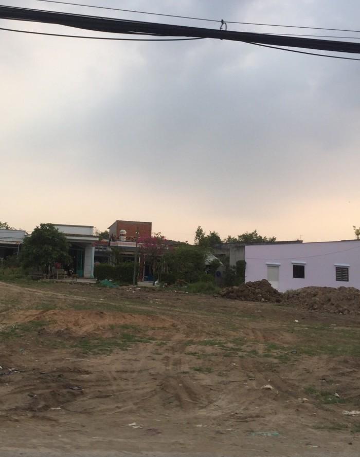Chú Hai có lô đất 1820m2 đường Huỳnh Minh Mương, Tân Thạnh Đông bán gấp