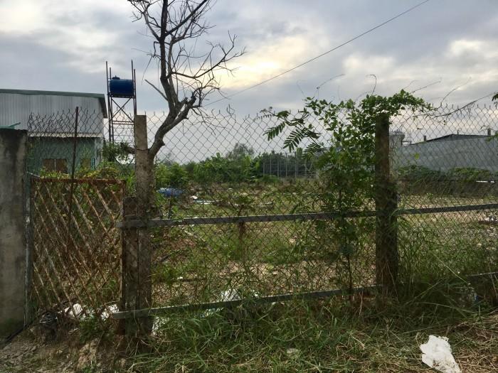 Chú Hai Danh bán đất thổ cư mặt tiền đường, Bình Chánh, 653 m2
