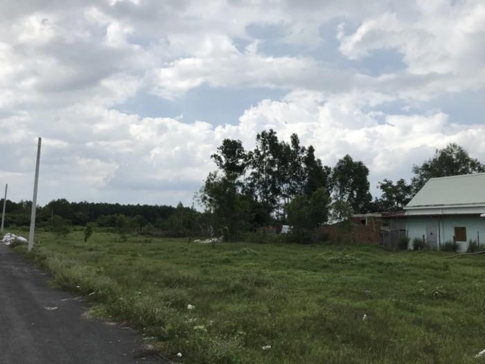 Cần Ra Gấp Lô Đất Ấp Thanh Bình Xã Lộc An , Long Thành , Đồng Nai