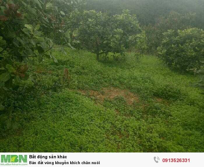 Bán đất vùng khuyến khích chăn nuôi