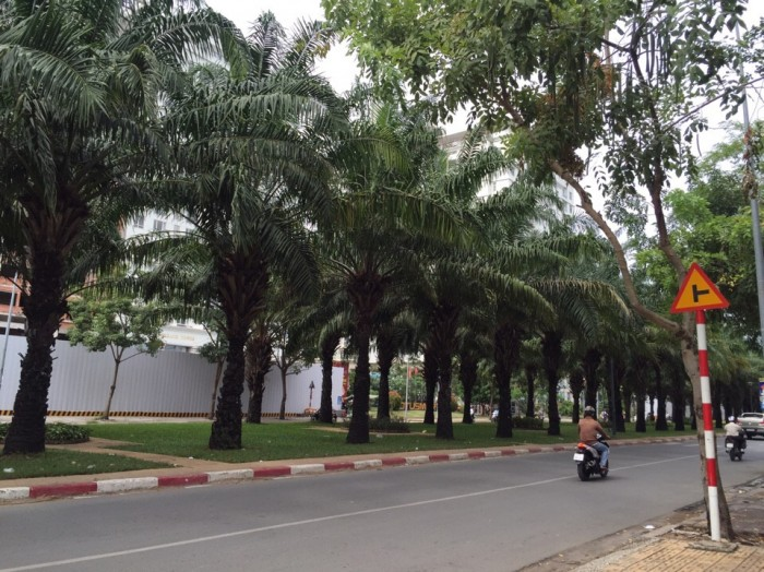 Bán Căn Nhà Mặt Tiền Đường Hàng Cọ 9A KDC Trung Sơn