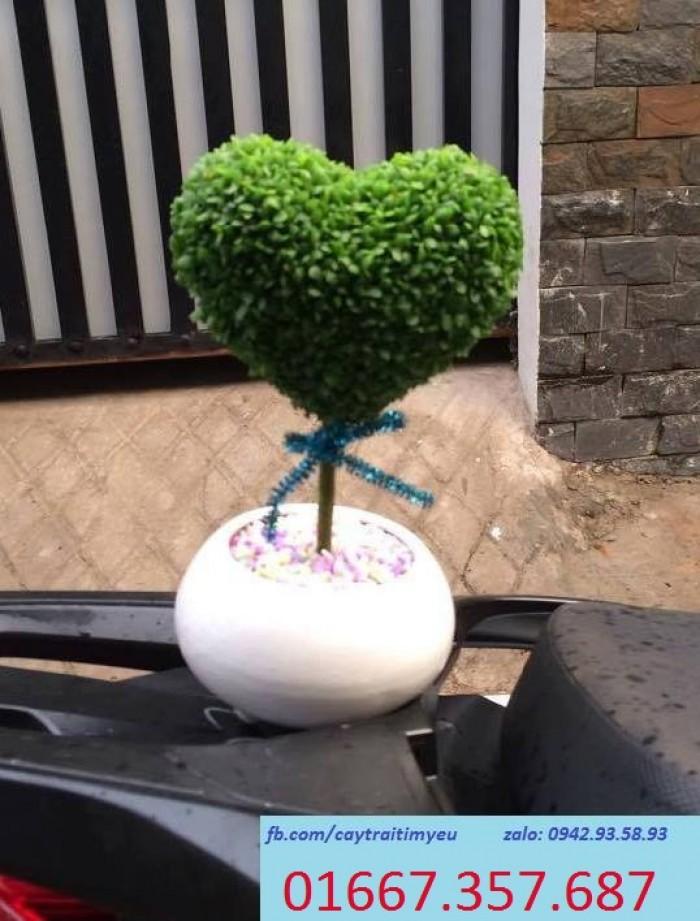 cây trái tim đơn 99k8