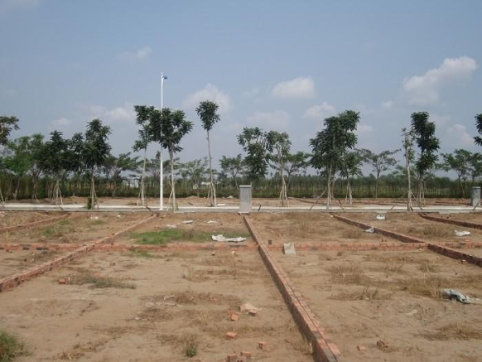 Đất Thổ Cư Giá Rẻ, MT QL50, SHR + XDTD