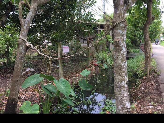 Bán đất nền lộ kênh tập đoàn đối diện trường Nguyễn Đình Chiểu