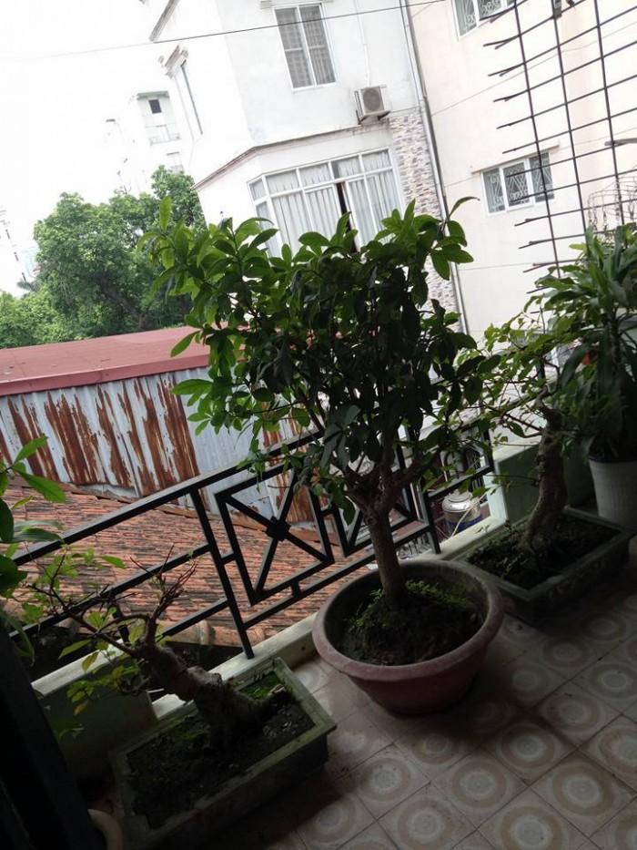 Bán nhà phố cổ Trần Hưng Đạo, Hoàn Kiếm 20/30m2, 4 tầng, 4.7 tỷ.
