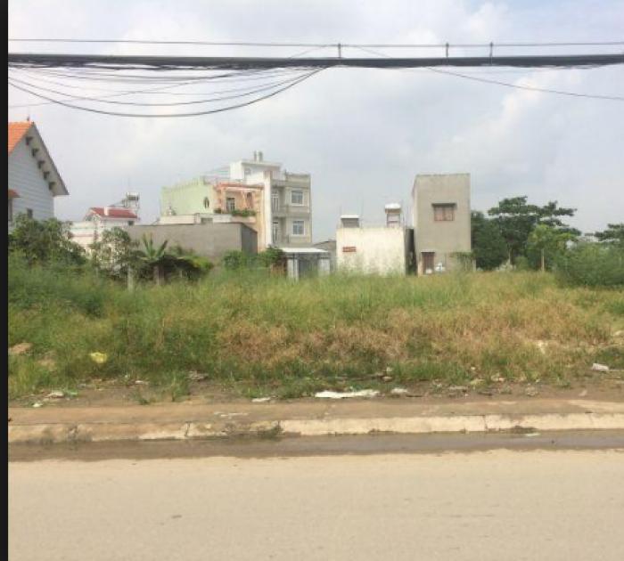 bán gấp lô đất Mặt tiền đường Bùi Văn Sự xã Quỳ Đức 763m2 , 100% thổ cư đất có Sổ Hồng Riêng