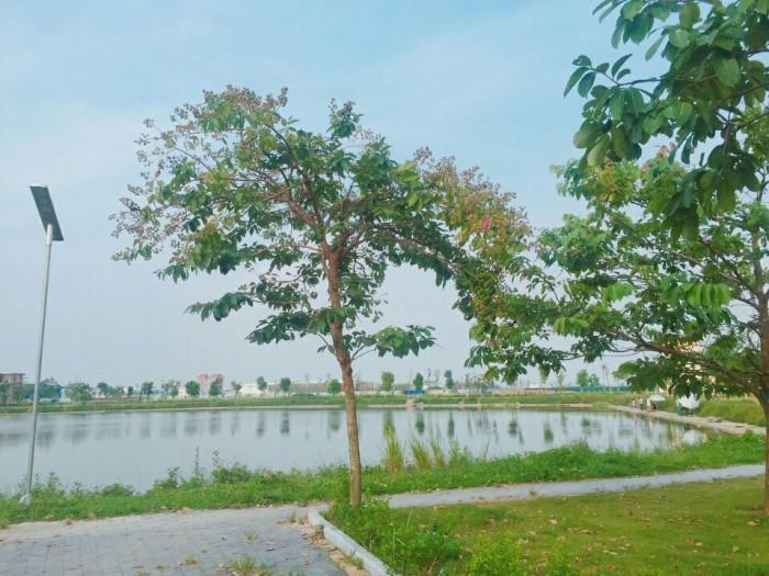 Đất phân Lô liền kề KĐT V- Green City Phố Nối, Hưng Yên, 100m2