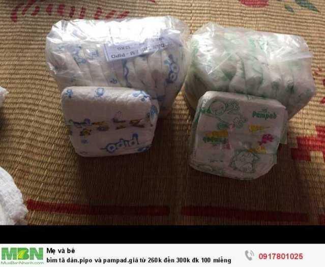 Bỉm tã dán pipo và pampad giá từ 260k đến 300k đk 100 miếng1